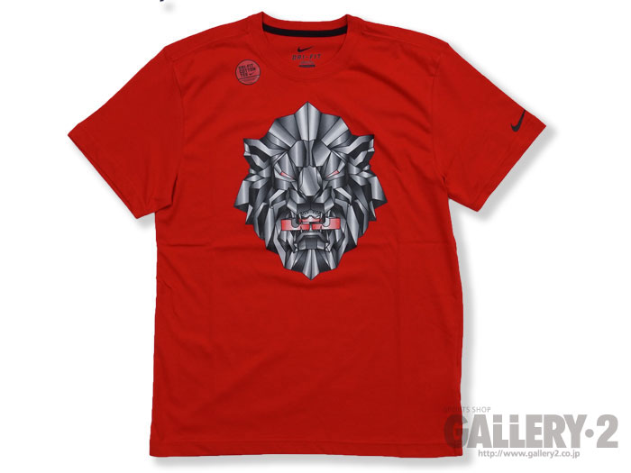 NIKE AS FA13 LEBRON FAN TEE