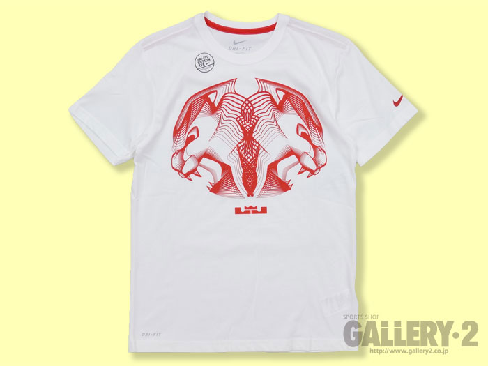 NIKE LEBRON VISUAL CENTER SS TEE