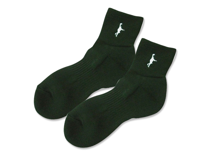 In The Paint ITP SOCKS (SS)