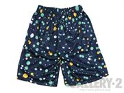 Champion SUBLIMATION SHORTS(詳細画像)