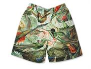 K1X Bird Gnarly Shorts(詳細画像)