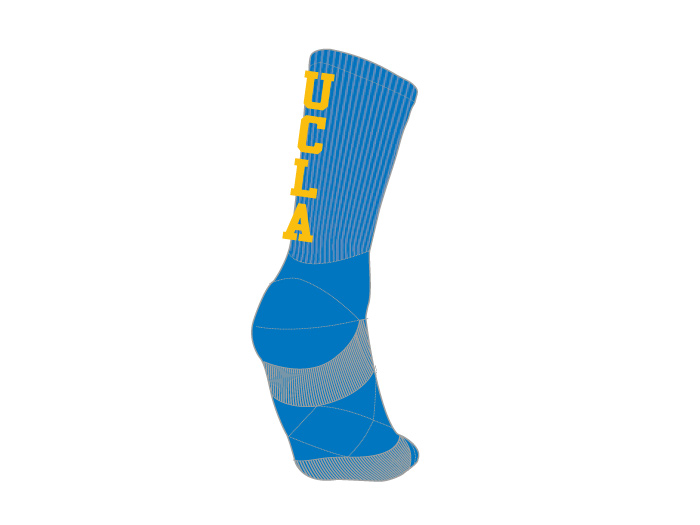 Champion UCLA GRIPSOCKS