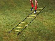 mitre Agility Ladders 9m