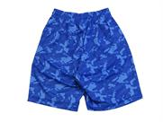 In The Paint CARBON CAMO SHORTS(詳細画像)